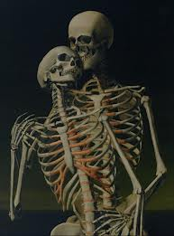 kärleksfulla skelett