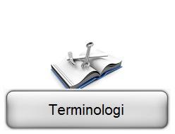 Terminologii