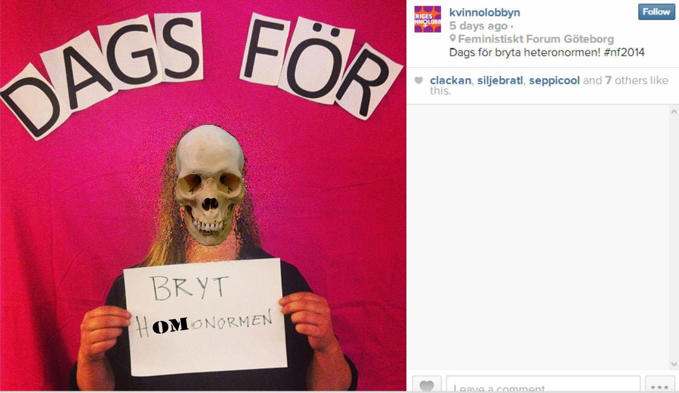 Sveriges Kvinnolobby heternormen copy