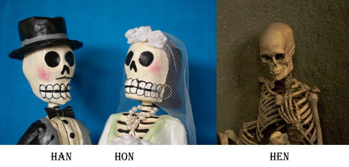 Han Hon Hen skeletons copy