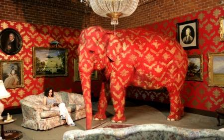 Elefanten i Rummet har perfekt kammoflage för att smälta in väggarna tapserade med vår tid och kulturs mönster. Det finns dock vissa knep att ta till för att göra den väldigt synlig [länka MiTs inlägg där han färgade misandri->judar]. Bildkälla http://www.kostdemokrati.se/nyheter/2012/01/04/lask-gor-levern-sjukligt-fet/#comment-76