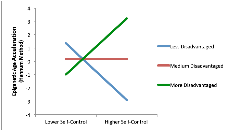 Accelererat åldrande beroende på självkontroll och ekonomisk utsatthet