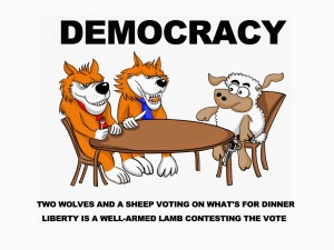 Democracy---Two-wolves-and-a-sheep-voting-on-whats-for-dinner